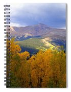 Mountain Fall Spiral Notebook