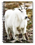 Mountain Goat Spiral Notebook