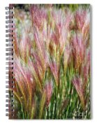 Mountain Grass Spiral Notebook