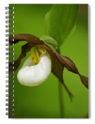 Mountain Lady's Slipper Spiral Notebook