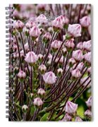 Mountain Laurel Bush Spiral Notebook