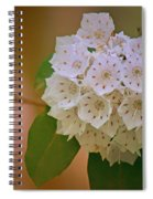 Mountain Laurel Spiral Notebook