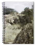 Mountain Lion Country Spiral Notebook