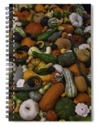 Mountain Of Squash Spiral Notebook