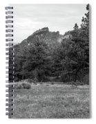 Mountain Peak Through The Trees In Black And White Spiral Notebook