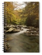 Mountain Stream 2 Spiral Notebook