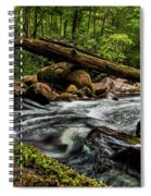 Mountain Stream Iv Spiral Notebook