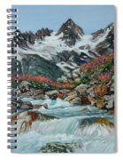 Mountain Stream Spiral Notebook