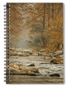 Mountain Stream With Tree Overhang #1 Spiral Notebook