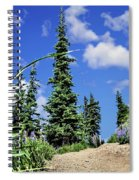 Mountain Trail - Olympic National Park Spiral Notebook