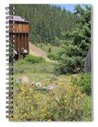 Mountain Treasures 3 Spiral Notebook