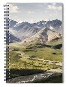 Mountains In Denali National Park Spiral Notebook
