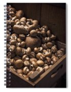 Mountains Of Mushrooms Spiral Notebook