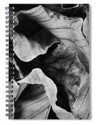 Mounts Botanical Garden 2363 Spiral Notebook