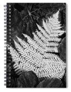 Mounts Botanical Garden 2365 Spiral Notebook
