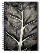 Mounts Botanical Garden 2374 Spiral Notebook