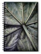 Mounts Botanical Gardens 2360 Spiral Notebook