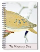 Mourning Dove In Snow Animal Portrait Spiral Notebook
