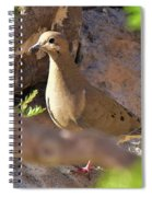 Mourning Dove On The Hillside Spiral Notebook