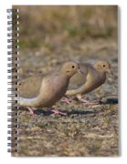 Mourning Dove Pair Spiral Notebook
