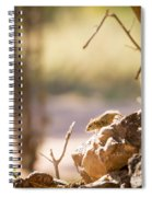 Mouse Spiral Notebook