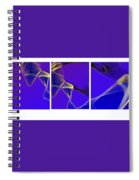 Movement In Blue Spiral Notebook