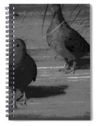 Mr And Mrs Dove Spiral Notebook