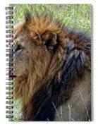 Mr. Big Stuff Spiral Notebook