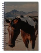 Mr Ed Spiral Notebook