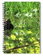 Mr. Grompy Spiral Notebook