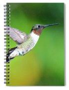 Mr. Humming Bird Spiral Notebook