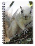 Mr. Inquisitive II Spiral Notebook