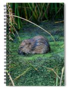 Mr. Muscrat Spiral Notebook