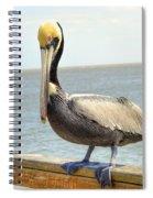 Mr. Pelican Spiral Notebook