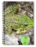 Mr. Perfectfrog Spiral Notebook