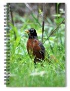 Mr. Spring Spiral Notebook