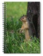 Mr. Squirrel Spiral Notebook