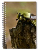 Mrs. Fly Spiral Notebook