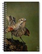 Mrs. Red Winged Blackbird Spiral Notebook