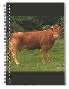 Mrs Whopper Spiral Notebook