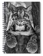 Ms Paws Monochrome Spiral Notebook