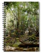 Mt Field Forest Spiral Notebook