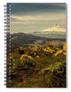 Mt. Hood And Wildflowers Spiral Notebook
