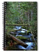 Mt Hood Wilds Spiral Notebook
