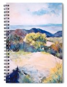 Mt Lemmon View Spiral Notebook