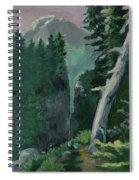 Mt Ranier Spiral Notebook