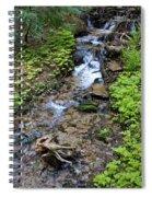 Mt. Spokane Creek 2 Spiral Notebook