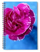 Much Love Spiral Notebook