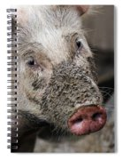 Mud Face Spiral Notebook