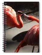 Mud Fight Spiral Notebook